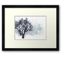 ... a life-long love affair with Nature Framed Print