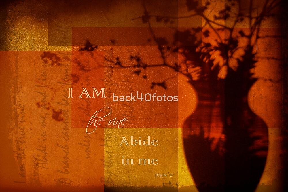 Abide In Me by back40fotos