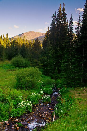 Creek Of The Evening Light by John  De Bord Photography