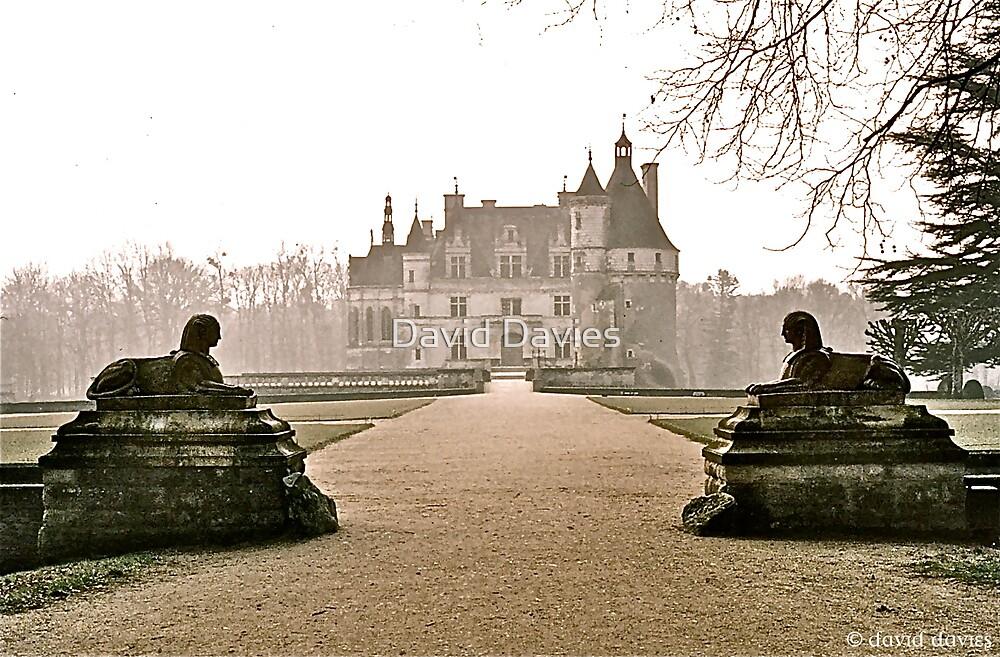 Chateau de Chenonceau by David Davies