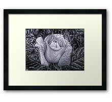 Metal Rose Framed Print