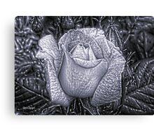 Metal Rose Canvas Print