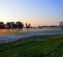 summer morning mist - central kentucky by John Carey