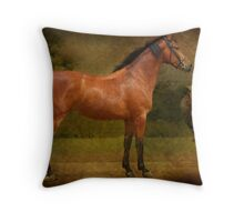 The  Race Horse. (TB X Polish Warmblood ) Throw Pillow