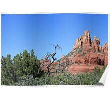 Red Rocks of Sedona Poster