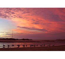 Colour Gull-ore Photographic Print