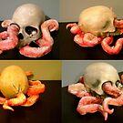 custom skull by Xtianna