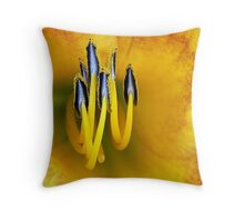 The More We Stick Together... Throw Pillow