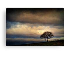 Texture Landscape Canvas Print