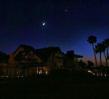 California Dreaming by Barbara  Brown