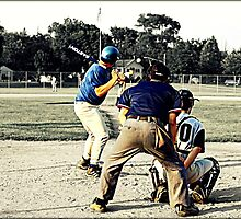 Baseball by Michelle Brown