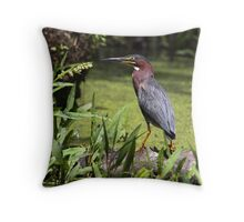 Frog Hunter / Green Heron Throw Pillow