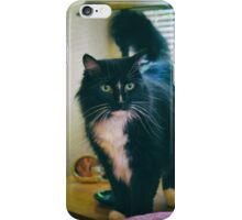 Curious cat iPhone Case/Skin