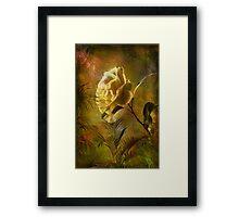 Rose ........ Framed Print