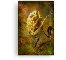 Rose ........ Canvas Print
