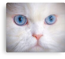 His Eyes Are Like the Sea to My Soul Metal Print