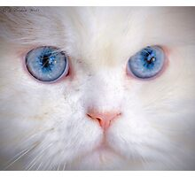 His Eyes Are Like the Sea to My Soul Photographic Print