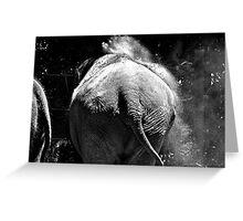Elephant Bath Greeting Card