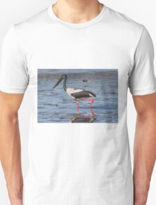 The Winter Ponds Unisex T-Shirt