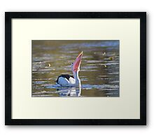A Bill Full Framed Print