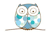 Blue Owl by Nicole Manks