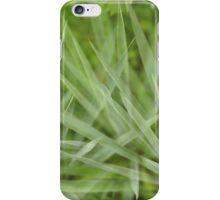 Green aloe iPhone Case/Skin