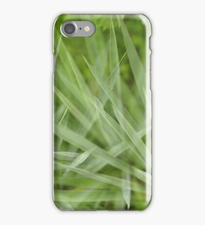 Green aloe iPhone Case/Skin