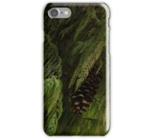 High Key Christmas Greenery With Giant Sugar Pine Cones iPhone Case/Skin