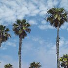 Palms Sunny Day Venice by Blue Skye Art  & Photography