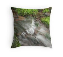 Backwoods Rushing Water Runs Fast Throw Pillow