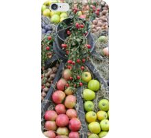 Fruit-Wheel iPhone Case/Skin