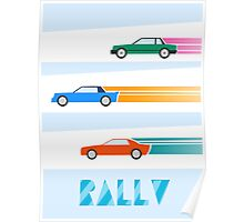 Rally cars Poster