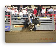 Bull Riding Twist Canvas Print