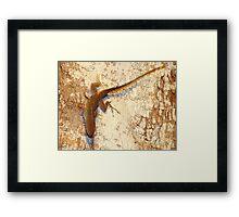 Lizard and matching bark Framed Print