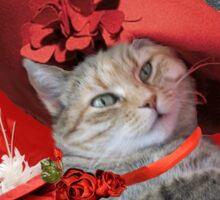 CHRISTMAS CELEBRATIONS OF PRINCESS TATUS CAT Sticker