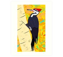 Pileated Woodpecker in Autumn Art Print