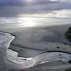"""Silver Serpent"" at Strahan's Ocean Beach by gaylene"