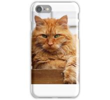 Malcolm the Watchcat iPhone Case/Skin