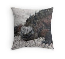 """At least I'm not spitting at you!"" Throw Pillow"