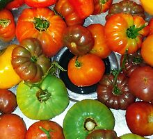 Making Tomato Sauce 2 by Sharon Thorp