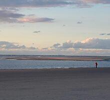 Almost Empty Beach  by Stefanie Köppler