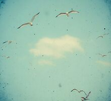 Circle of Birds by Cassia