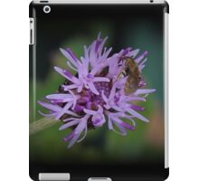 Microworld iPad Case/Skin