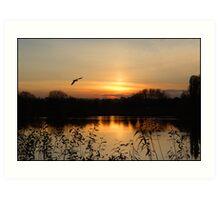 Watermead Sunset  Leicestershire UK. Art Print