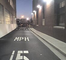 15 MPH by Amos White