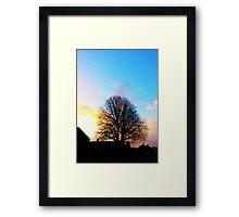 Tree at Sunrise Framed Print