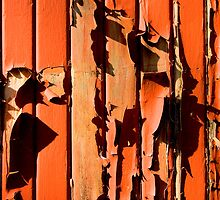 Weathered Paint by Quentin  Croft