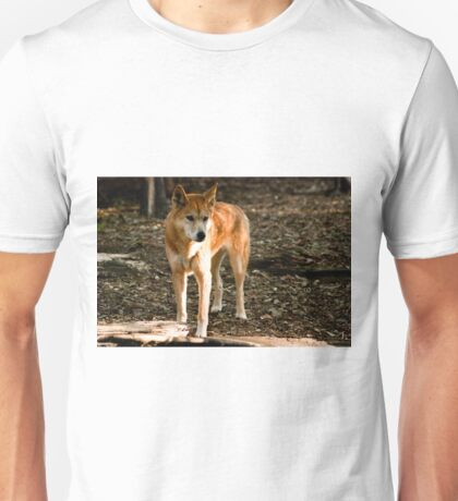 0131 Australian Dingo T-Shirt