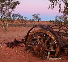 Cart Ruin, Old Andado Station, Outback Australia by Joe Mortelliti