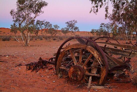 Cart Ruin, Old Andado Station, Outback Australia by Joe Mortelliti